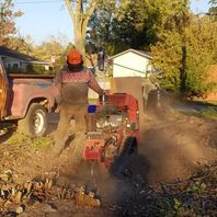 stump grinding with the help of machine