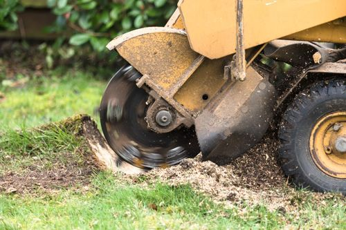 machine being used for stump grinding